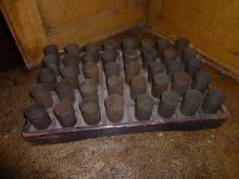 Wage Cup Tray and Cups