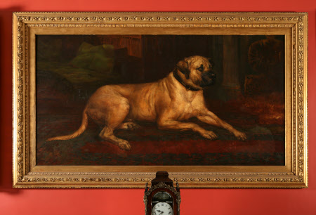 'Lion', a Lyme Mastiff in the Entrance Hall at Lyme